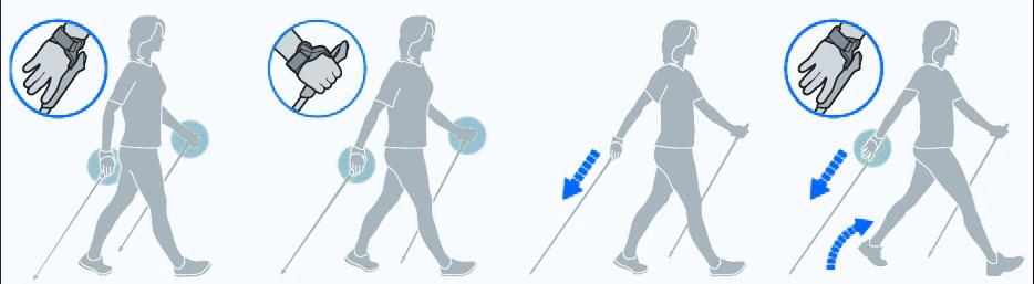 Техника скандинавской ходьбы